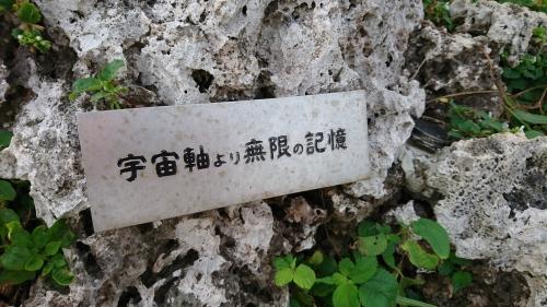 DSC_0053_3.JPG 縺ョ繧ウ繝斐・